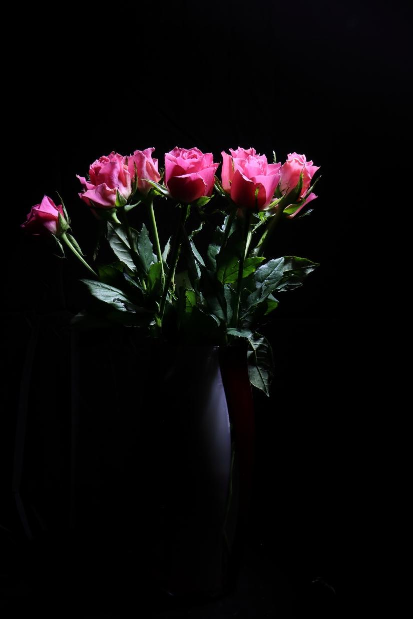 La luce e le rose