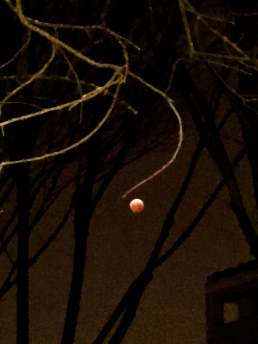 La mia luna rossa