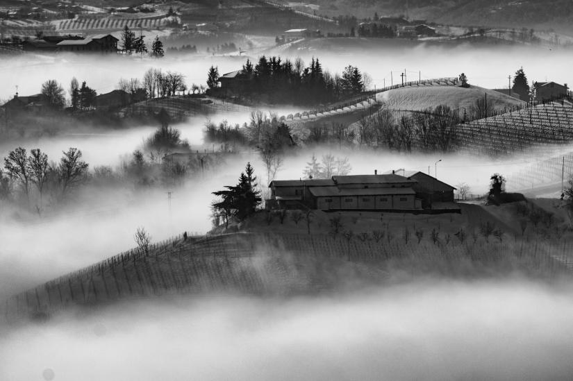 La nebbia nelle langhe