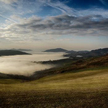 La nebbia nell'Oltrepò Pavese