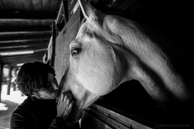 La seduzione del cavallo