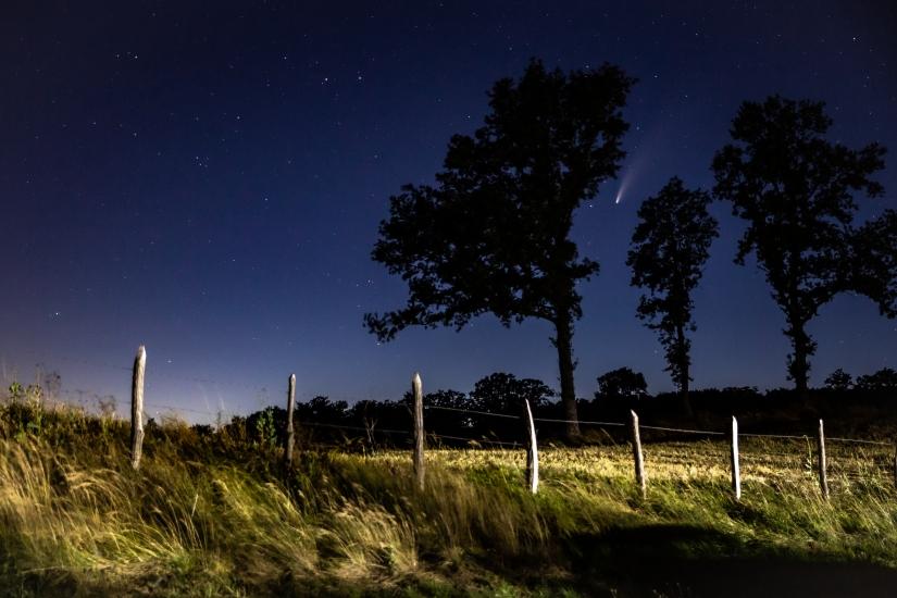 La stella cometa Newise