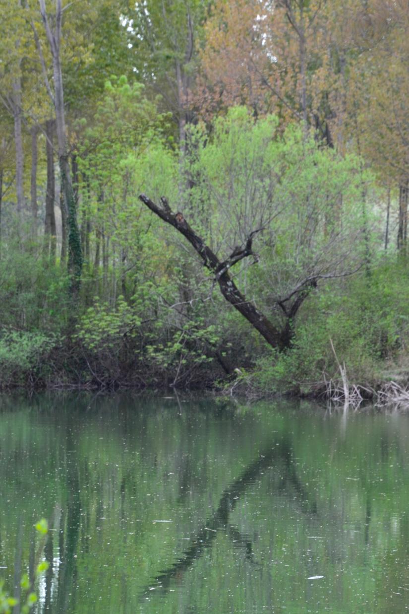 Lago delle Mucille