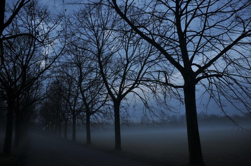 L'avanzare della nebbia all'imbrunire