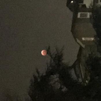 Le mie lune
