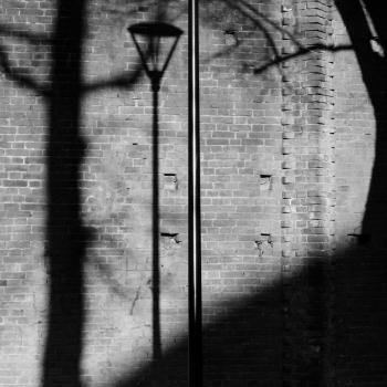 L'ombra dell'uomo