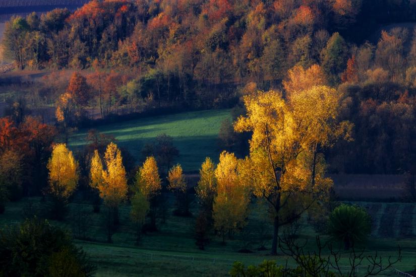Luce d'autunno
