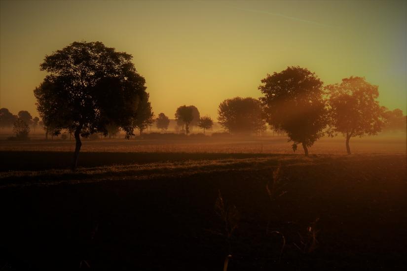 Luce mattutina