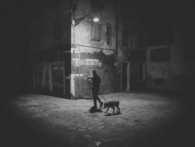 L'uomo, il cane e il telefono