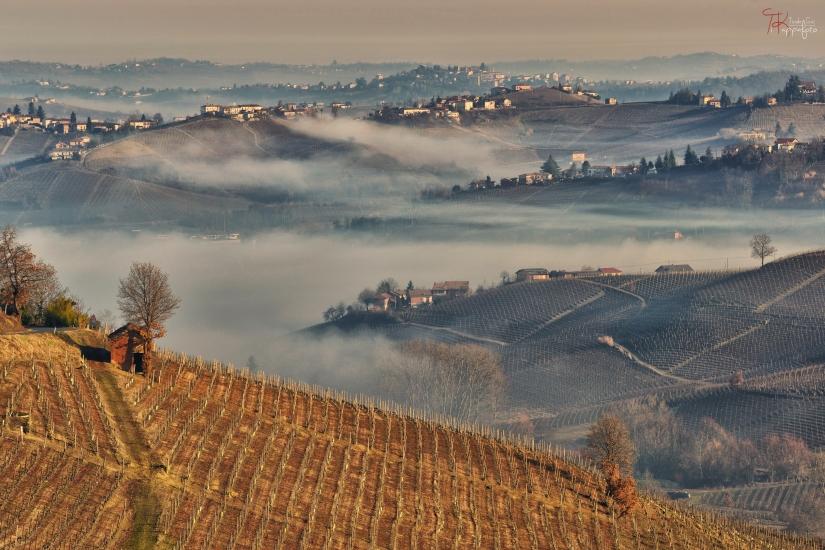 Mattino d'inverno nel Monferrato, sullo sfondo Agliano Terme