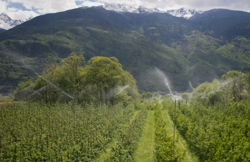 Meleti Valtellinesi