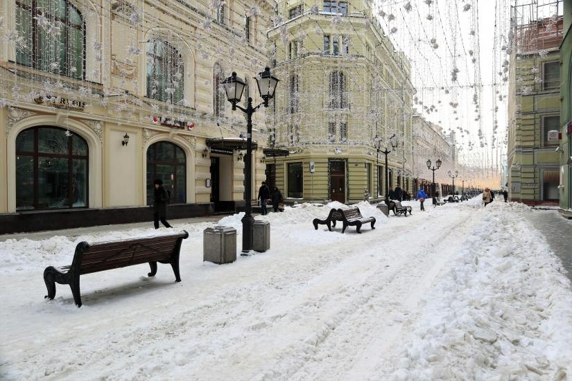 Mosca....bianca