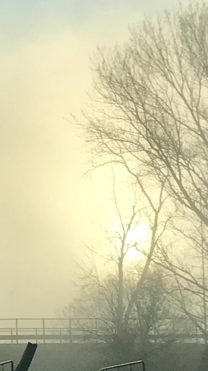 Nebbia milanese