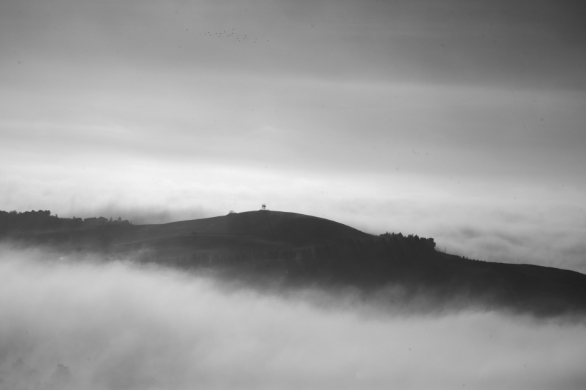 Nebbia sui colli