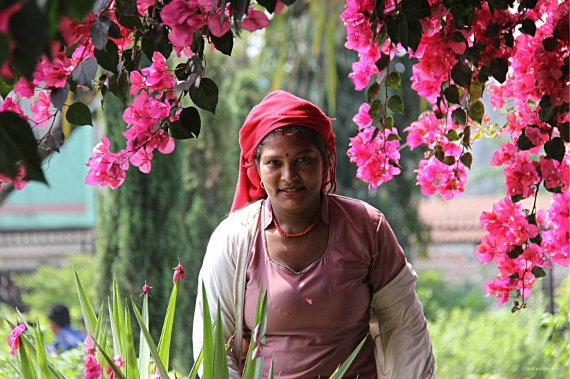 Nel giardino di Pokhara