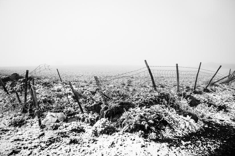 Neve Garita3