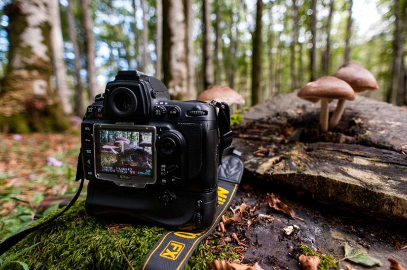 Nikon D700... da montagna