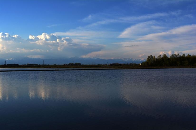 Nuvole in risaia