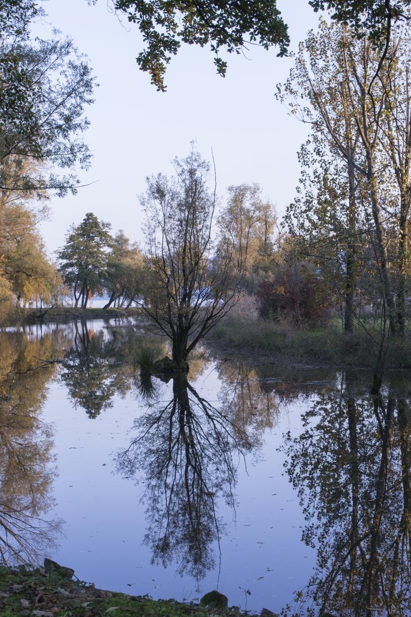 Oasi al Lago