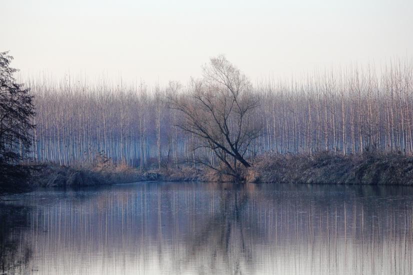 Paesaggio Fluviale 1°
