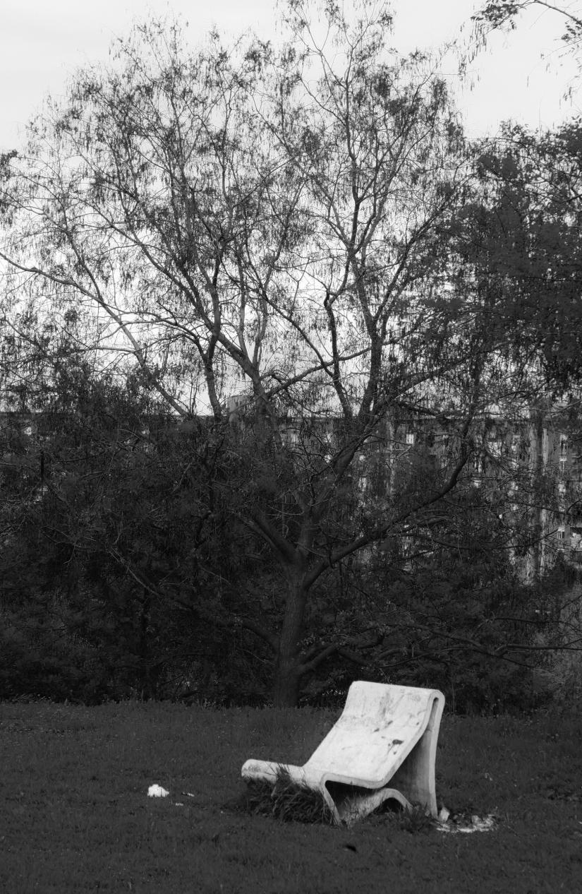 Panchina abbandonata