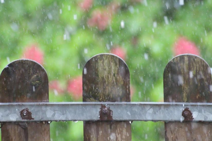 Pioggia sullo steccato