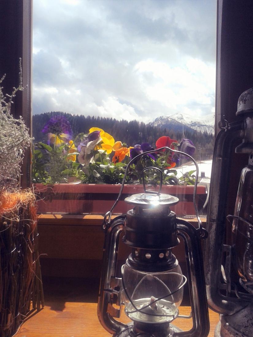 Primavera a Sauris
