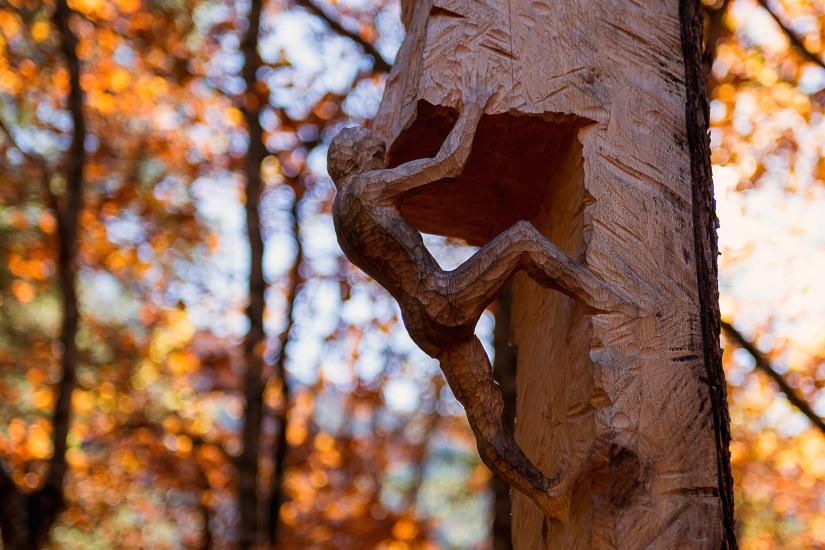 Scultura nel legno
