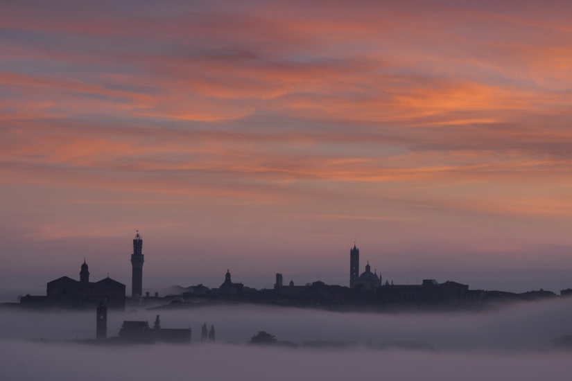 Siena and the fog