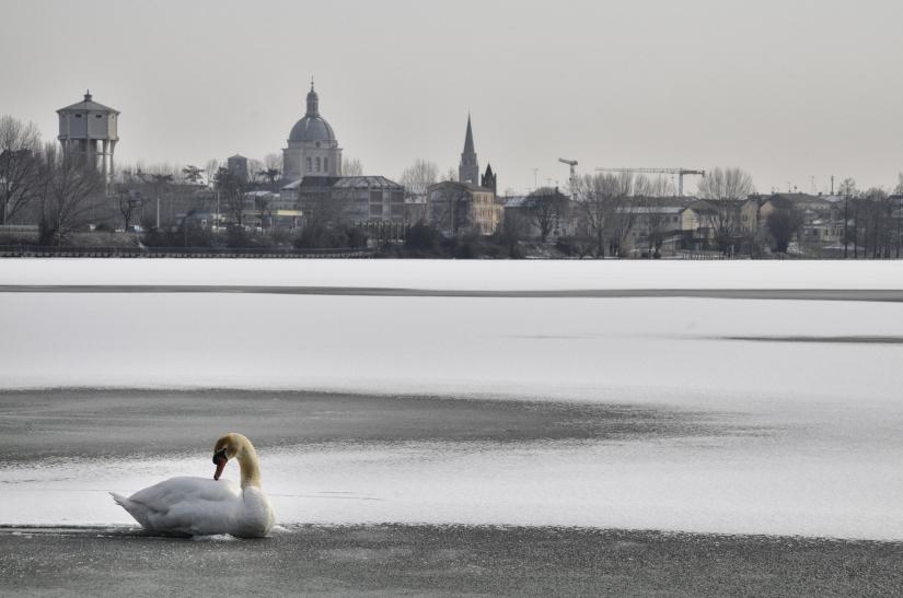 Silenzio… Parla il gelo!