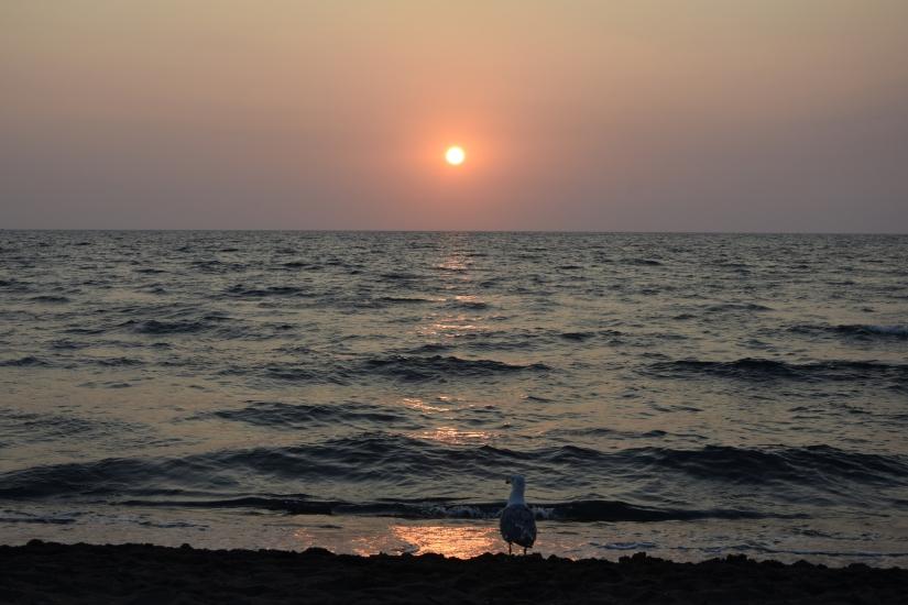 Solo al tramonto