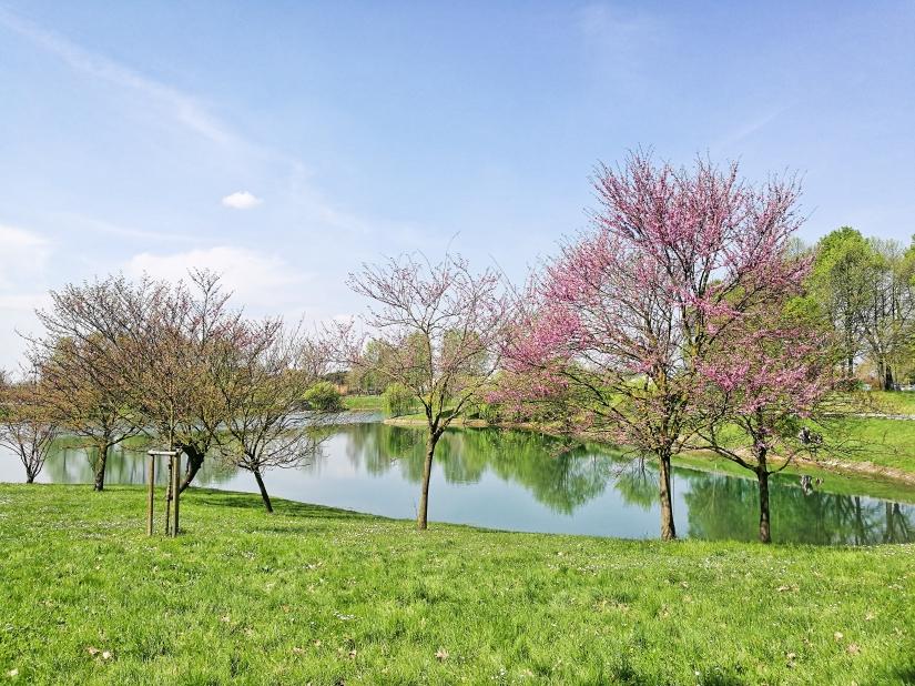 Spring in Milan