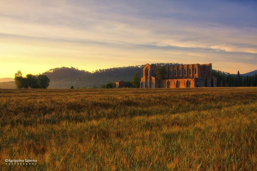St. Galgano Abbey in early morning light