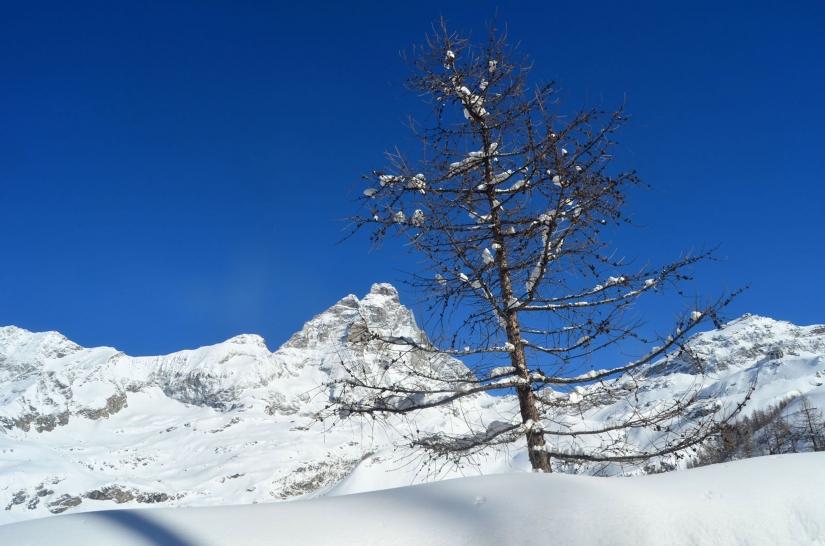 Sublime angolo invernale
