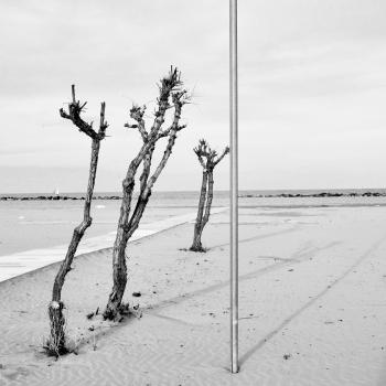 Sulle Rive dell'Adriatico