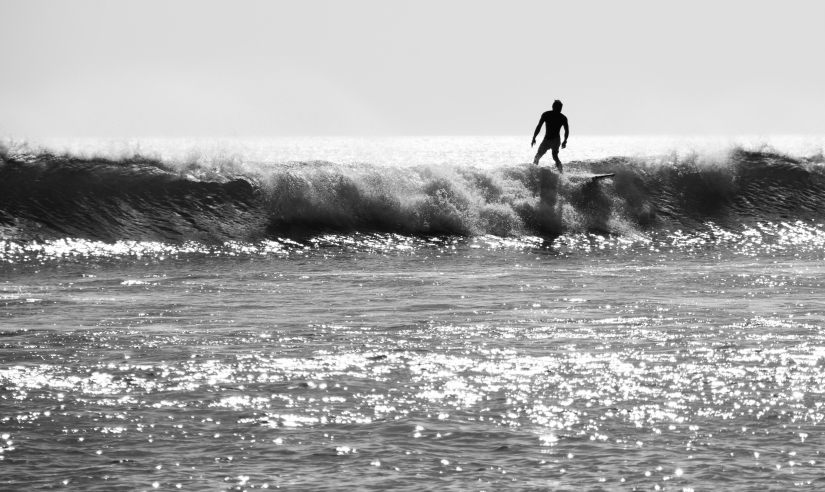 Surfer 2