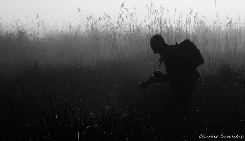 The photo hunter