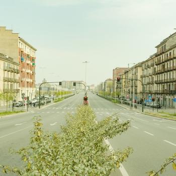 Torino [Covid-19 emptyness]