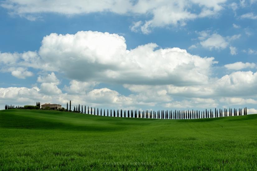Toscana nel cuore..