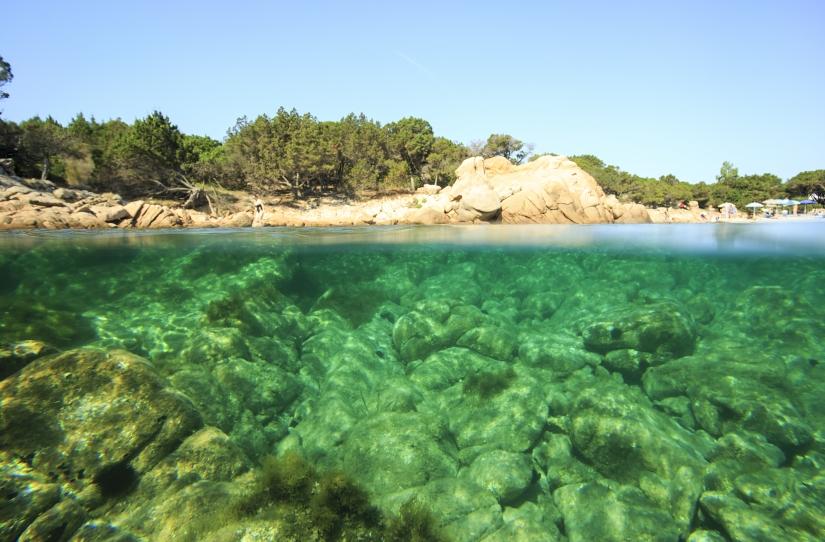 Trasparenze sottomarine in Sardegna
