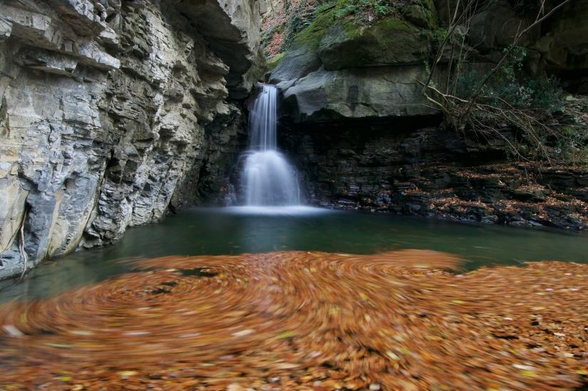 Ultima danza delle foglie