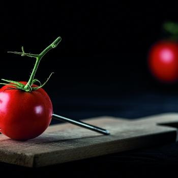 Un chiodo fisso: il pomodoro