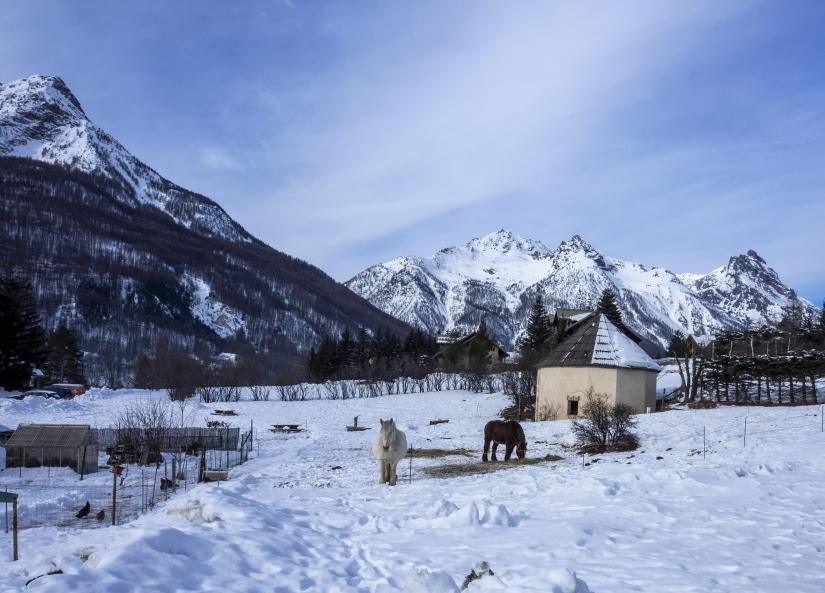 Un mondo di neve