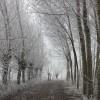 Un paesaggio invernale