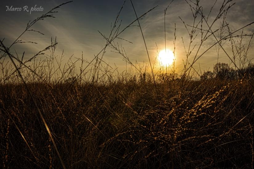 Un semplice tramonto