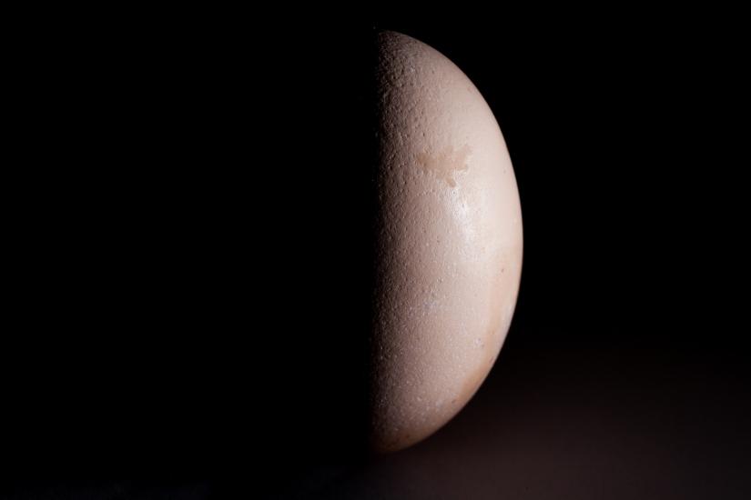 Uovo lunare