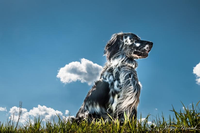 Vento e nuvole