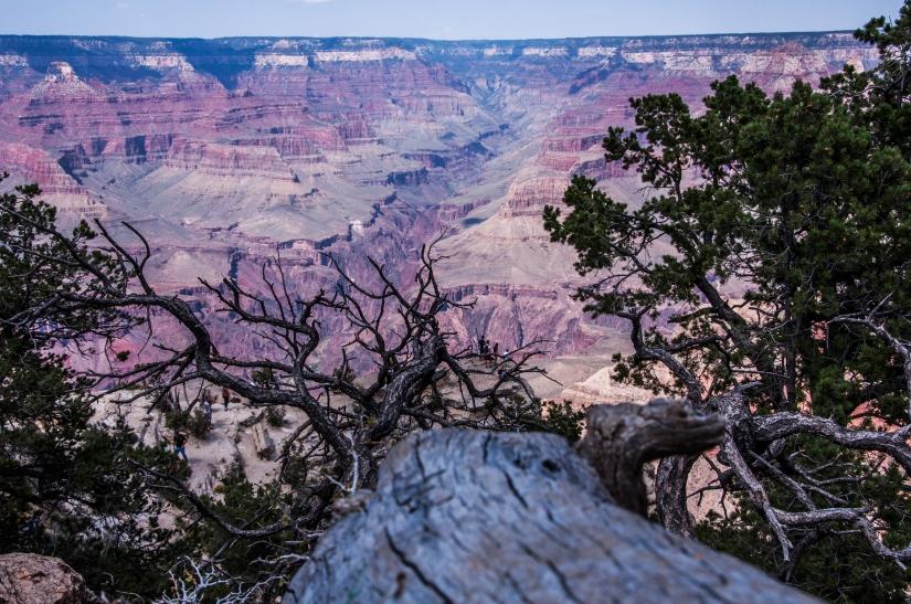Verso il Gran Canyon