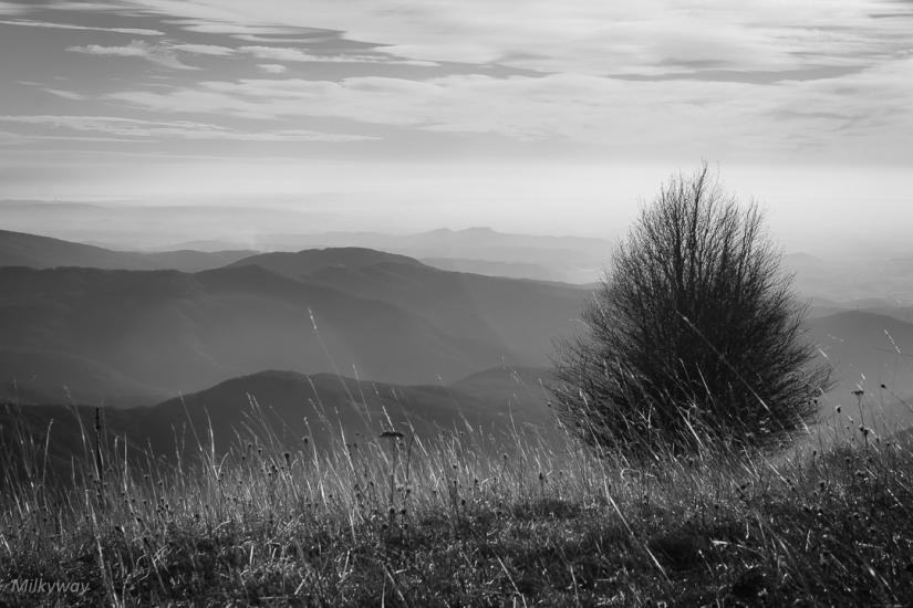 Verso la vetta del Monte Matajur